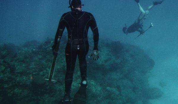 Baja Spearfishing Charters | America's Dive Boat